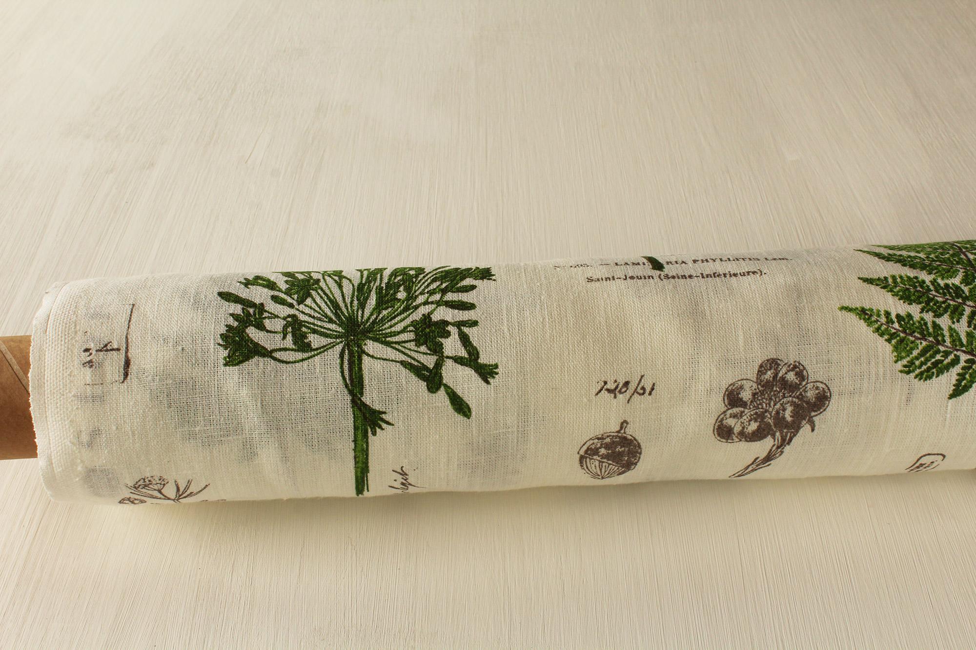 tessuto botany